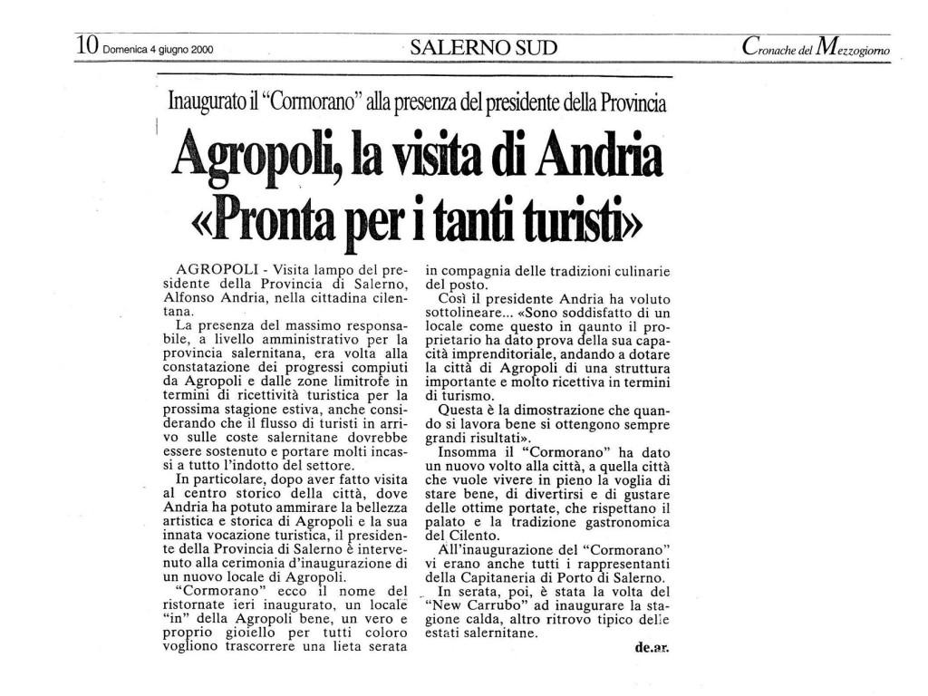 cormorano_rassegnastampa_4giugno2000